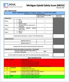 Michigan Opioid Safety Score
