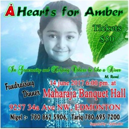 Please go to Hearts for Amber to donate support - http://bit.ly/2ymagZX
