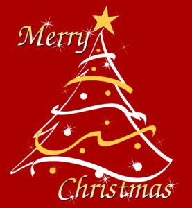 Have a Safe and Merry Christmas!